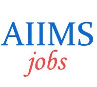 Teaching Jobs in AIIMS