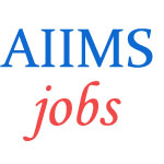 Nursing Officers Jobs in AIIMS