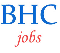 Law Clerk Jobs by Bombay High Court