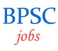 Auditor Panchayati Raj Department Jobs in BPSC