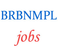 Assistant Manager Security Jobs in BRBNMPL