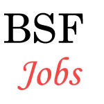 Junior Engineer and Sub-Inspector Jobs in BSF