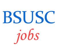 Assistant Professor Jobs in BSUSC