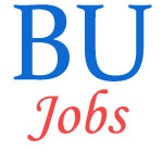 Teaching Jobs in Bastar University