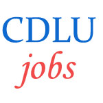 Teaching Jobs in Chaudhary Devi Lal University