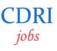 Scientist Jobs in CDRI