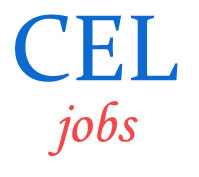 Managers Jobs in Central Electronics Limited