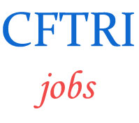 Technical Assistants Jobs in CFTRI