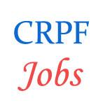 ASI Steno Jobs in CRPF