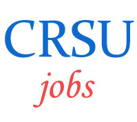 Professor Teaching Jobs in CRSU