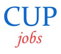 Teaching Jobs in Central University of Punjab