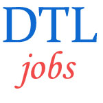Manager Finance Jobs in Delhi Transco Limited