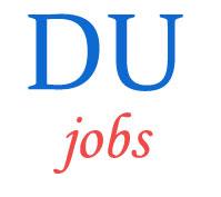 Assistant Professor Jobs in Delhi University