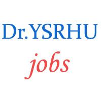 Assistant Professors Jobs in Dr. YSR Horticultural University