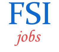 Project Associates Jobs in FSI
