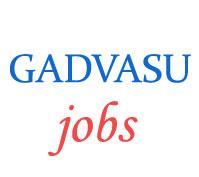 Guru Angad Dev Veterinary & Animal Sciences University (GADVASU) Jobs