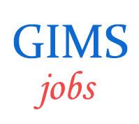 Teaching Jobs in GIMS