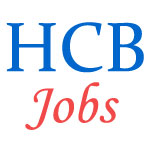 Family Court Judge Jobs by Bombay High Court