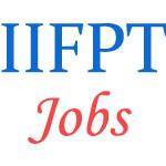Teaching Jobs in IIFPT