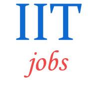 Assistant Professor Teaching Jobs in IIT