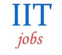 Teaching Jobs in IIT