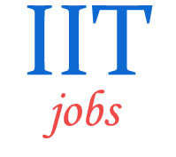 Associate/Assistant Professors Jobs in IIT