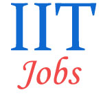 Non-Teaching Jobs in IIT