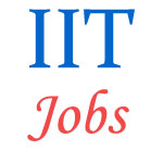 Indian Institute of Technology (IIT) Jobs