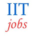Registrar Jobs in IIT