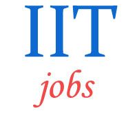 Teaching Jobs in IIT