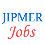 Teaching Jobs in AIIMS Mangalagiri by JIPMER