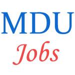 Teaching or Non-Teaching Jobs in MDU