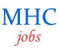 Residential Assistant Jobs in High Court Madras
