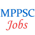 Assistant Professor Examination in MP PSC