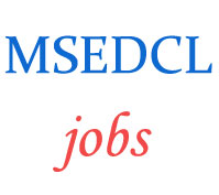 Executive Assistant Jobs in MSEDCL