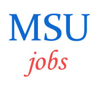 Clerical Technical Non-Teaching Staff Jobs in MSU