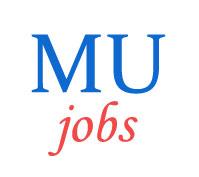 Assistant Professor Jobs in Mizoram University