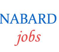 Development Assistant Jobs in NABARD