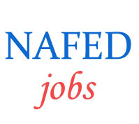 Executive Assistant Jobs in NAFED