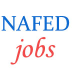 Assistant Manager (Accounts and IT) Jobs in NAFED