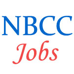 Engineers/Managers Executives Jobs in NBCC