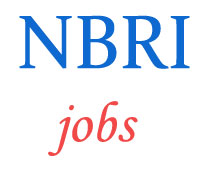 Scientist and Driver Jobs in NBRI