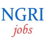 Technical Jobs in NGRI