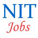 Assistant Professor Jobs in NIT