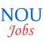 Teaching Jobs in North Orissa University