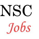 National Seeds Corporation Limited Jobs