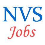 Non-Teaching  Jobs in Navodaya Vidyalaya Samiti (NVS)