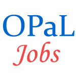 Petrochemicals Executive and Non-Executive Jobs in OPaL