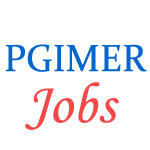 Special Jobs Drive for PWD candidates in PGIMER