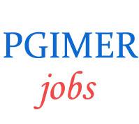 Assistant Professor Jobs in PGIMER